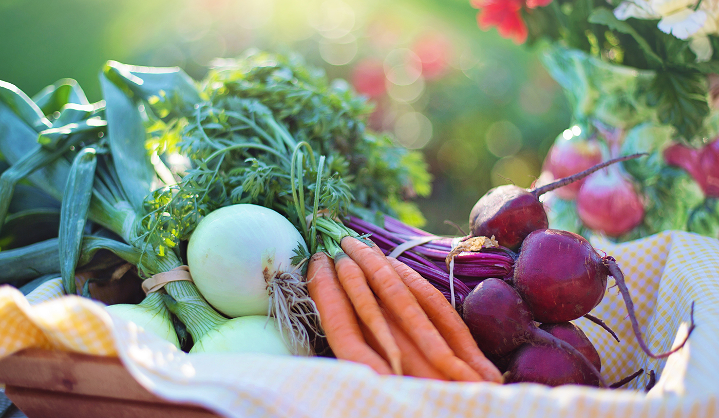 The Organic Food that we Made it's Always will be Better